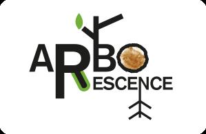 Arborescence - Cléry-Saint-André (45)